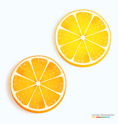 fresh lemon and orange slice icon on a white vector image