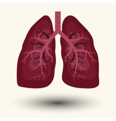 Human lung icon vector