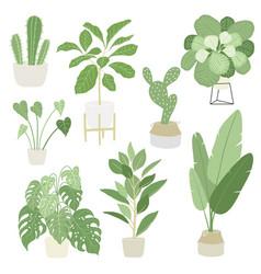 Interior home indoor plants set vector