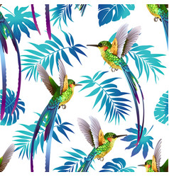 hummingbird and tropical flowers background vector image