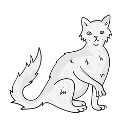 British semi-longhair icon in monochrome style vector