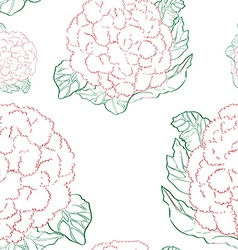 cauliflower pattern vector image