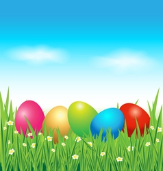 Colorful Easter eggs on green grass vector image