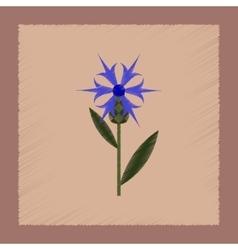 flat shading style icon plant flower Centaurea vector image