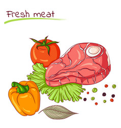 fresh meat and vegetables vector image