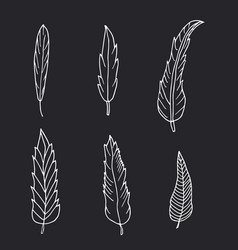 Hand drawn set of feathers on black background vector