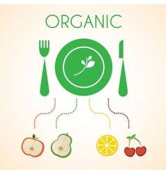 plate of organic fruits vector image