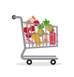 shopping cart in the supermarket with goods vector image