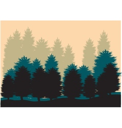 Silhouettes of spruce vector