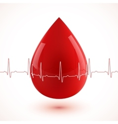 Red glossy 3d blood drop with cardiogram vector image
