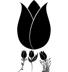 Flowers Set 10 vector image vector image