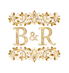 Br vintage initials logo symbol letters b vector