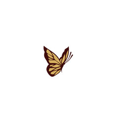 Butterfly animal logo vector