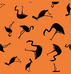 contour tropical birds seamless orange background vector image