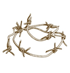 Engraving barbed wire vector