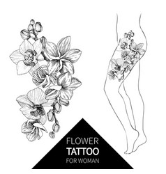 Hand drawn black outline bouquet with orchid and vector