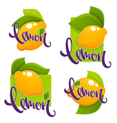 Lemon flavour collection of glossy stickers vector