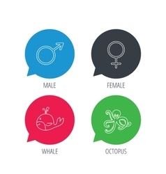 Male female and octopus icons vector