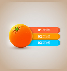 realistic fresh orange infographics options vector image