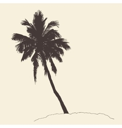 Palm Tree Bounty Vintage Engraving Sketch vector image vector image