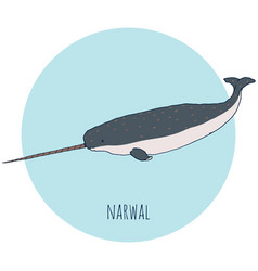 narwal whale vector image vector image