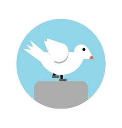 Abstract seagull vector image