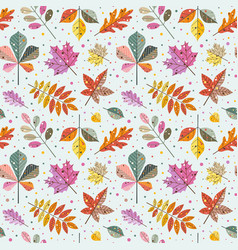 Autumn tree leaves and fall foliage pattern vector