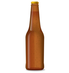 Brown bottle of beer vector
