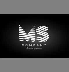Ms m s letter alphabet logo black white icon vector