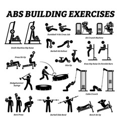 abs and abdomen building exercise and muscle vector image