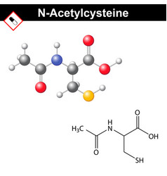 acetylcysteine mucolytic expectorant detoxifying vector image
