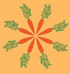 carrot mandala vector image