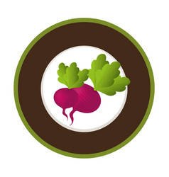 Fresh vegetable product seal vector