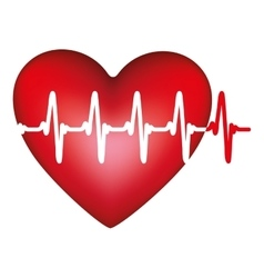 Heart and cardiogram icon image vector