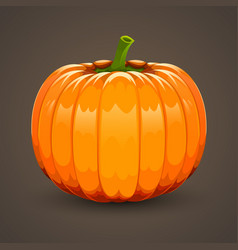 Pumpkin on dark background vector