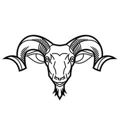 ram head vector image