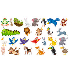set cute animal vector image