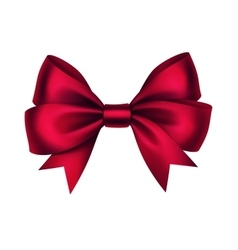 Shiny Red Satin Gift Bow Isolated White vector