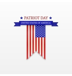 Stylish Patriot Day American Flag stripes vector image