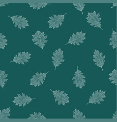 seamless pattern of white autumn leaves of red oak vector image vector image