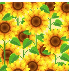 Vintage seamless pattern with flowers sunflowers vector image vector image