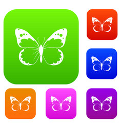 Butterfly set collection vector
