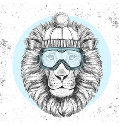 Hipster animal lion in winter hat vector