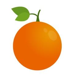 Orange icon vector