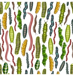 Worm and caterpillar insects seamless pattern vector