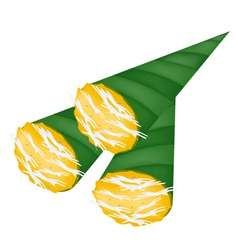 Thai Toddy Sugar Palm Cake in Banana Leaf Cone vector image vector image