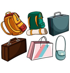 Different type of bags vector image vector image
