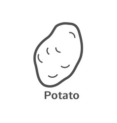 potato thin line icon isolated vegetables linear vector image