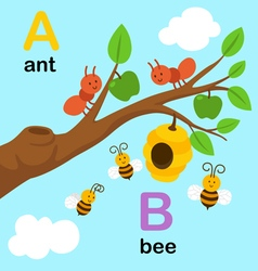 Alphabet a b vector