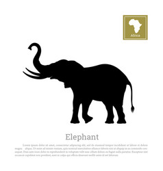 black silhouette of elephant on white background vector image